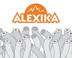 Спальники Alexika. Характеристики и особенности.