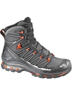 Ботинки Salomon Cosmic 4D 2 GTX M